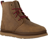 Cognac UGG Lace-up boots HARKLEY WEATHER  - small