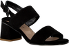 Black NOTRE-V Sandals AWEY  - small