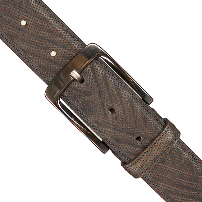 Taupe REHAB Belt BELT BUFFALO - large