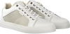 White GAASTRA Sneakers HUFF  - small