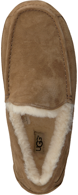 Brown UGG Slippers ASCOT - large