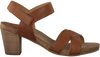 Brown CA'SHOTT Sandals 15054 - small