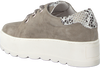 Taupe ROBERTO D'ANGELO Lace-ups 605  - small