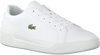 White LACOSTE Sneakers CHALLENGE  - small