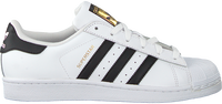 White ADIDAS Sneakers SUPERSTAR J - medium