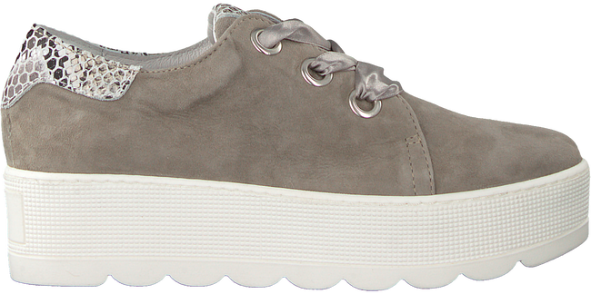 Taupe ROBERTO D'ANGELO Lace-ups 605  - large