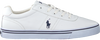 White POLO RALPH LAUREN Low sneakers HANFORD  - small