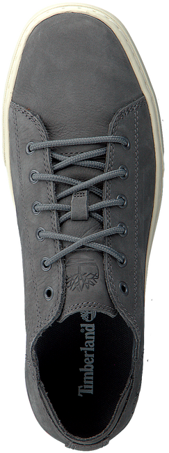 Blue TIMBERLAND Sneakers ADV 2.0 CUPSOLE MODERN  OX ADV - large