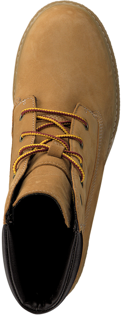 Camel TIMBERLAND Ankle boots AMSTON 6IN - large