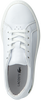 White LACOSTE Sneakers L.12.12 - small