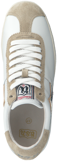 White ASH Sneakers GUEPARD - large