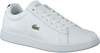 White LACOSTE Sneakers CARNABY EVO 3 - small