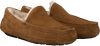 Camel UGG Slippers ASCOT - small