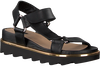 Black ROBERTO D'ANGELO Sandals 550  - small