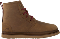 Cognac UGG Lace-up boots HARKLEY WEATHER  - medium