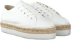 White ROBERTO D'ANGELO Lace-ups NEPAL  - small