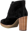 Black TOMMY HILFIGER Booties JENINA 1B - small