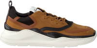 Cognac BARRACUDA Sneakers BU3242  - medium