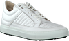 White HINSON Sneakers DEXTER STITCH - small