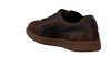 Brown PUMA Sneakers LIGA KIDS - small