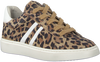 Beige GIGA Sneakers G2033 - small